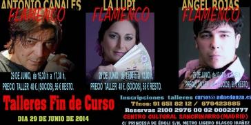 FIN DE CURSO2014